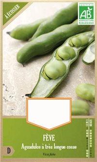 Graines de fève Aguadulce à très longue cosse